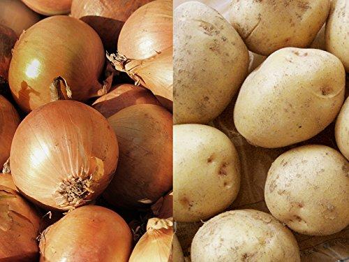 男爵いも&たまねぎ(北もみじなど)セット 各約5kg 合計10kg 北海道産ジャガイモと玉ねぎのセット