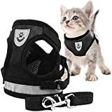 Toulifly Pettorina per Gatti,Harness Cat,Set di...