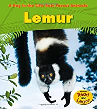 Lemur (A Day in the Life: Rain Forest Animals)