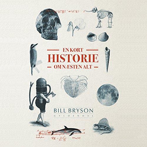 En kort historie om næsten alt audiobook cover art