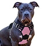 Eagloo Dog Harness No Pull, Walking Pet Harness with 2 Metal Rings and Handle Adjustable Reflective Breathable Oxford Soft Vest Easy Control Front Clip Harness Outdoor for Large Dogs Pink