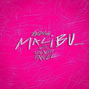 malibu (Trevor Daniel remix)