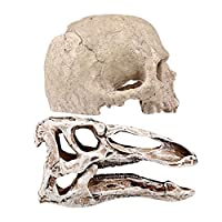 Balacoo 2個水族館装飾樹脂人工恐竜の頭蓋骨スケルトン飾り魚エビ隠蔽洞窟ベタ魚隠れ家水槽風景装飾ベージュ