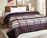 SIGNATURE SOLE Flannel 380 TC Blanket (Double_Multicolour)