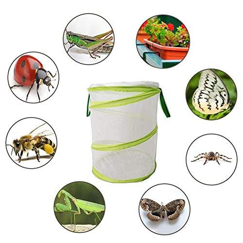 Ttdbd Jaula de Insectos y Mariposas, Conjunto de cría de Mariposas de Insectos Gran terrario Plegable de Jaula de Red de Insectos Ventana emergente para Mariposas, polillas y jaulas de Insectos