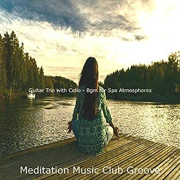 Guitar Trio with Cello - Bgm for Spa Atmospheres