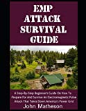 EMP Attack Survival Guide: A Step-By-Step Beginner's Guide On How To Prepare For And Survive An Electromagnetic Pulse Attack That Takes Down America's Power Grid (The Modern Survivalist)