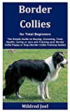 Border Collies for Total Beginners: The Simple Guide on Buying,...