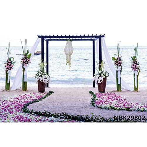 Fondo para fotos de boda, cumpleaños, San Valentín, fondo de castillo, fotografía de fondo para fotografía de fotografía y fotografía A25 10 x 7 ft / 3 x...