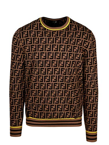 Fendi Luxury Fashion Herren FZZ481AAV9F0WF0 Braun Viskose Sweater | Herbst Winter 20