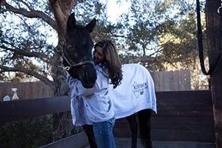 classic equine nylon sheet