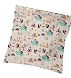 Kissen/Kissenbezug 35 x 35 cm, 2 Stück, Indianer