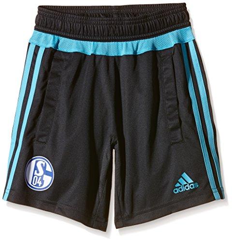 adidas Jungen Trainingsshorts FC Schalke 04 Training Short, Night Grey/Super Cyan S12, 164