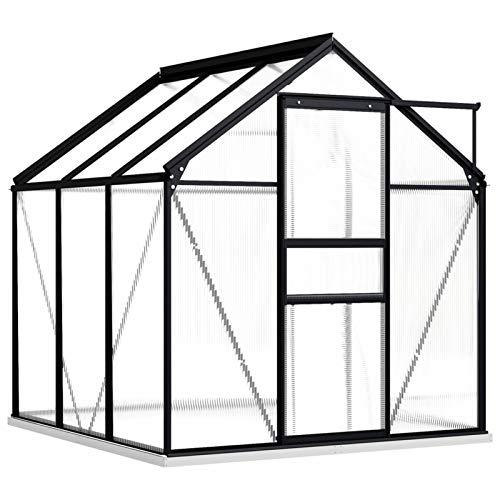 Irfora Gewächshaus Pflanzenhaus Tomatenhaus Gartenhaus mit Fundamentrahmen UV-beständig Anthrazit Aluminimum 3,61 m³