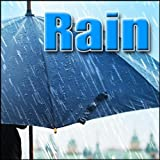 Rain - Heavy Rain on Screened in Porch Roof Rain
