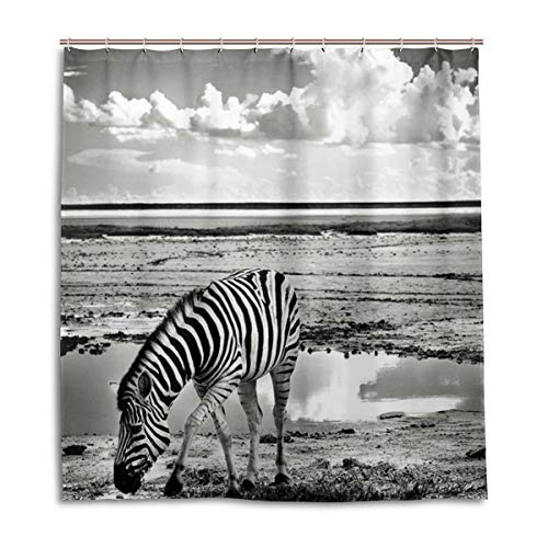 BIGJOKE Duschvorhang, Afrika, Zebra, schimmelresistent, wasserdicht, Polyester, 12 Haken, 167,6 x 182,9 cm, Heimdekoration