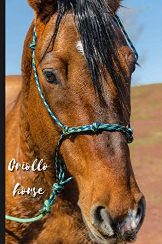 Criollo horse: Journal and Notebook - Composition Size (6'x9') With 120 Lined Pages, Perfect for Journal, Doodling, Sketching and Notes