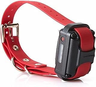 Receptor y collar adicional del educador para el sistema de entrenamiento de la serie Pro, negro