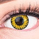 Meralens Lenti a Contatto Colorate Lupo Giallo Yellow Lenses Heroes Of Cosplay - con porta lenti a contatto - ideali per Manga Anime Sharingan Halloween – Durata 1 Anno - 1 Coppia senza correzione