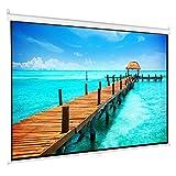 HDDFG 60-84 Pulgadas HD 16: 9 Pantalla de proyector desplegable Manual Pantalla de película de Fibra de Vidrio de Tela Blanca Mate con Bloqueo automático para Cine en casa (Size : 84 Inch)