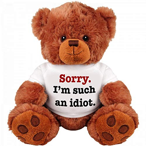 """SORRY I'M SUCH AN IDIOT"" 13"" Inch Teddy Bear - Cute And Cuddly : Funny Teddy Bear Couple Gift : Romantic Cute Teddy Bear Stuffed Animal"