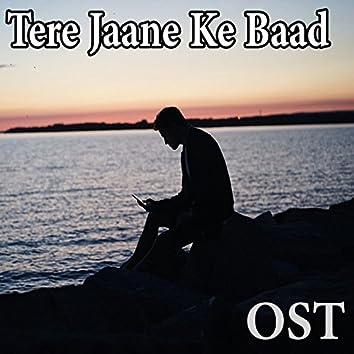 "Tere Jaane Ke Baad (From ""Tere Jaane Ke Baad"")"