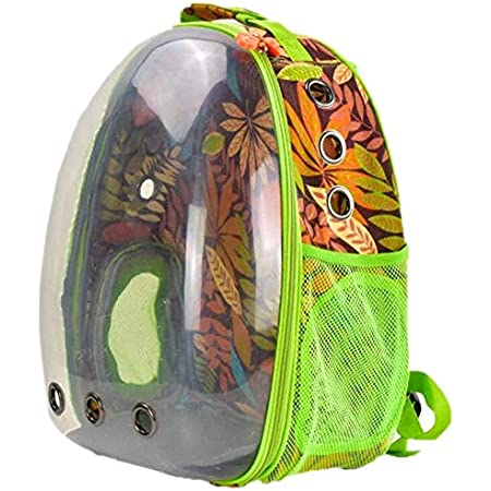 Petcrux Pet Transparent Cat Pet Carrier Backpack Puppy Kitty Breathable Carriers for Travel (Printed Transparent, Green)