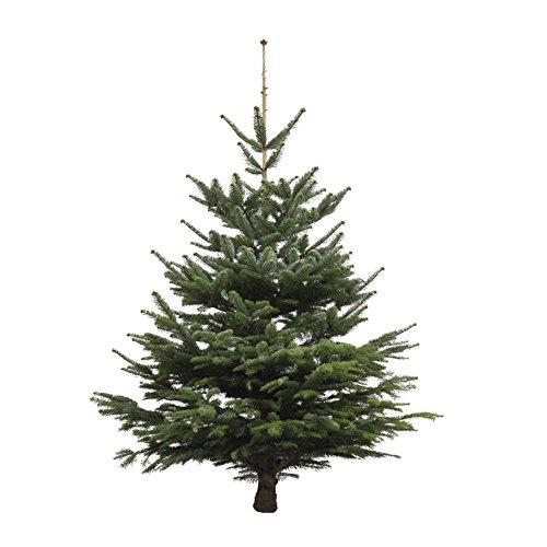 Weihnachtsbaum online kaufen