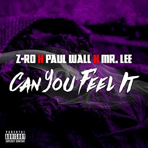 Z-RO & Mr. Lee713 feat. Paul Wall
