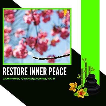 Restore Inner Peace - Calming Music For Home Quarantine, Vol. 14