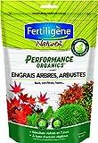Fertiligene Engrais Arbres, Arbustes, Buis, Conifères, 700 g