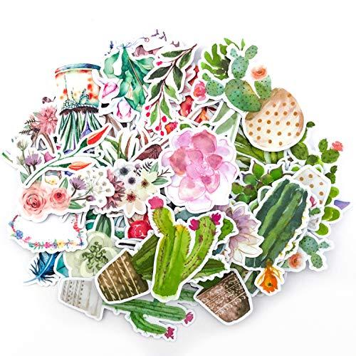 Navy Peony Stickers Adesivi Cactus e fiori watercolor | Stickers impermeabili piccoli per laptop, skateboard e custodie telefono | Graziosi stickers per diari, agende e quaderni (65 pezzi)