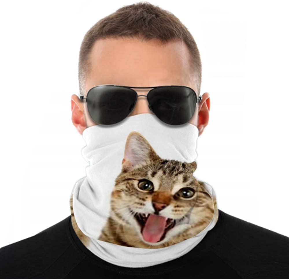 Headbands For Men Women Neck Gaiter, Face Mask, Headband, Scarf Bengal Cat Looking Over Sign Turban Multi Scarf Double Sided Print Face Mask Bandana Men For Sport Outdoor