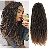 Cuabn Twist Hair Marley Hair Ombre 20 Inch Long Afro kinky Twist Hair T30 3 Packs Marley Twist Braiding Hair Extensions (20 Inch (Pack of 3), T1B/30)