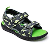 Veittes Toddler Kid's Sport Sandals, Girl Boy Comfortable Sport Open Toe Outdoor Shoes with Dinosaur Unicorn Fruit Printed.(2009001,BL/KL,7)
