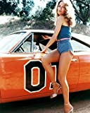 Erthstore Catherine Bach as Daisy Duke in The Dukes of Hazzard Posing by General Lee 24x30 Poster