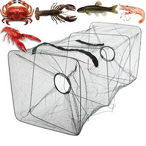 Mamum piegare il gamberetto Nets, nuovo pieghevole pesce carpa esche da pesca gabbia in ghisa a immersione Cage gamberetti cestino, C, Taglia unica