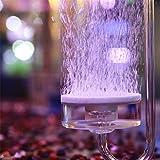 Diffusore in Pietra d'Aria per Acquario, Diffusore a Bolle Airstone per Coltura Idroponica, Diffusore di Atomizzazione CO2 per Piante Acquatiche d'acquario