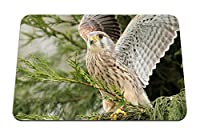 22cmx18cm マウスパッド (鳥捕食者翼木材スイープ) パターンカスタムの マウスパッド