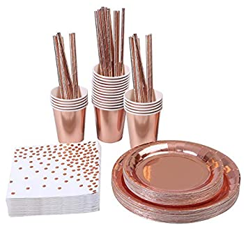 Aneco 146 Pieces Rose Gold Party Supplies Party Tableware Foil Paper Plates Napkins Cups Straws for Weddings Anniversary Birthday for 24 Guests