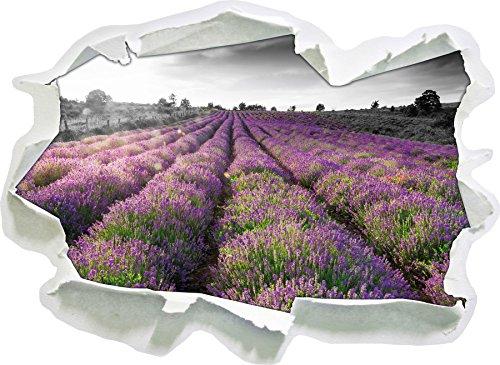 Stil.Zeit Lavendelfelder in der Provence schwarz/weiß, Papier 3D-Wandsticker Format: 92x67 cm Wanddekoration 3D-Wandaufkleber Wandtattoo