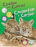 Cuddled and Carried / Consentido y cargado (Beginnings) (English Edition)