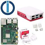 Raspberry Pi 4 Model B, 2 GB (2 GB) con ioBroker Set