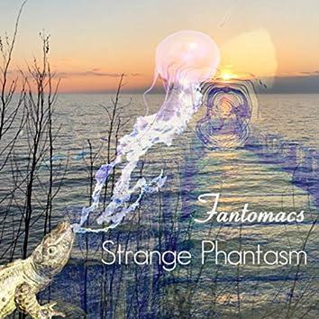 Strange Phantasm