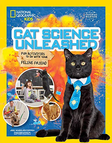 Cat Science Unleashed: Fun activities to do with your feline friend
