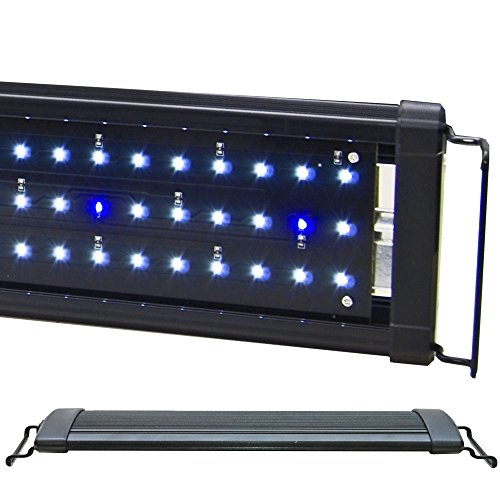 BeamsWork EA White Blue LED Aquarium Fish Tank Light Extendable Timer Ready (48' - 54')