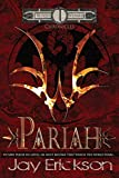 Blood Wizard Chronicles: Pariah (Volume 1)