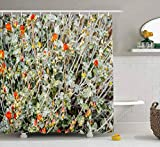 N\A Duschvorhang, Babypartyvorhang Naitischer Duschvorhang Feld Bunte rot-orange Wildblumen in Palm Spring Wasserdichtes Dekor Badestoff Polyester Design Set mit Haken