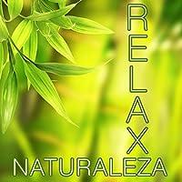 Naturaleza Relax - Las Mejores Músicas Relajantes para Meditación, Clases de Yoga, Reiki, Spa, Salones de Belleza y para Lograr la Paz y la Tranquilidad Interior