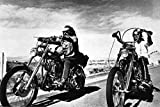 5562 Easy Rider Poster Dennis Hopper Peter Fonda seltenes